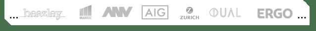M&A Risk Versicherer (W&I)
